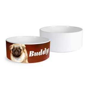 dog-bowl-Printing-Pearland-Houston